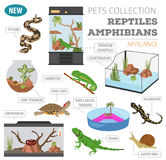 Pet appliance icon set flat style isolated on white. Reptiles an Stock Photos