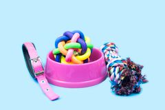 Pet bowl, Rope, rubber ball and collars on light blue background. royalty free stock images
