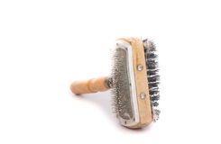 Pet brush with clump Royalty Free Stock Image