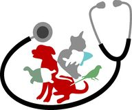 Pet care. Isolated line artwork Stock Photography