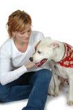 Pet Care Stock Image