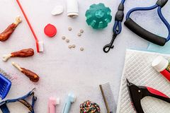 Dog caring tools: brushes, pills, nail clipper, leash, medicine, toilet pad, snacks and toys scattered on white background top. Pet care concept. Tools and royalty free stock photo