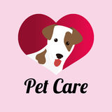 Pet care design. Pet care digital design, vector illustration 10 eps graphic Stock Photos