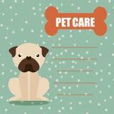 Pet care Stock Photos