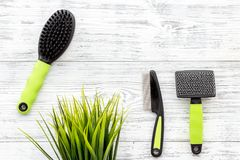 Pet care and grooming tools with brushes on white wooden background top view space for text Stock Photography