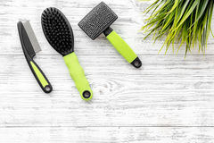 Pet care and grooming tools with brushes on white wooden background top view space for text. Pet care and grooming tools with brushes on white wooden table Royalty Free Stock Photo