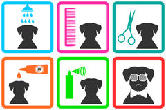 Pet care icons. With fashion doggy with sunglasses Stock Image