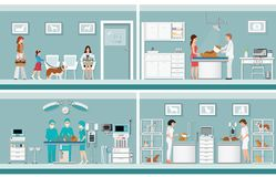 Pet care with veterinary in pet clinic. Pet care with veterinary in pet clinic, animal health care conceptual vector illustration Royalty Free Stock Photo