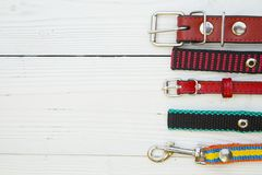 Pet care and walking concept. Pet care, veterinary concept. A white wooden background with a right border of red leather and textile collars. Space for a text or Stock Image