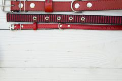 Pet care and walking concept. Pet care, veterinary concept. A white wooden background with a top border of red leather and textile collars. Space for a text or Stock Images