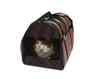 Pet carrier with cat. Isolated over white background Royalty Free Stock Image