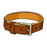 Pet, cat, dog brown leather collar with metal buckle Stock Photography