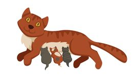 Free Pet Cat Feeding Or Nursing Kittens Babies Vector Cartoon Icon Stock Photos - 113559033
