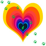 Pet Cat Love Hearts Stock Images