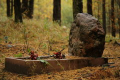 Pet Cemetery in the forest Stock Images