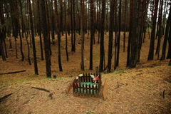 Pet Cemetery in the forest Royalty Free Stock Photography