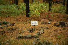 Pet Cemetery in the forest Royalty Free Stock Photos