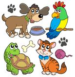 Pet collection. On white background - vector illustration Stock Photos