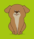 Pet design. Stock Image