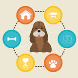 Pet design. Stock Images