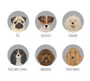 Pet dog breed round badge stickers Royalty Free Stock Photography