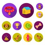 Pet dog flat icons in set collection for design. Caring for the puppy vector symbol stock web illustration. Pet dog flat icons in set collection for design Stock Photo