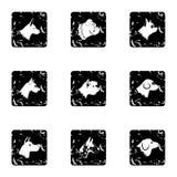 Pet dog icons set, grunge style Stock Photography