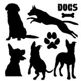 Pet dogs, black silhouette - vector collection. Dogs, black silhouette on white isolated Stock Images