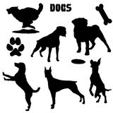 Pet dogs, black silhouette - vector collection. Dogs, black silhouette on white isolated Stock Photography