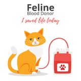 Pet donor concept. Vector cartoon style background of pet donate blood concept. Donor day. Motivational poster. Cat sitting near blood bag.n Vector Illustration