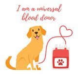 Pet donor concept. Vector cartoon style background of pet donate blood concept. Donor day. Motivational poster. Dog sitting near blood bag.n Vector Illustration