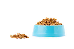 Pet dried food in cyan plastic bowl Stock Photo