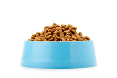 Pet dried food in cyan plastic bowl. Front view pet dried food in cyan plastic bowl isolated on white background royalty free stock images