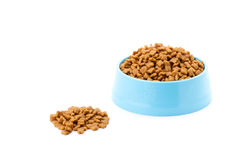 Pet dried food in cyan plastic bowl Royalty Free Stock Photos