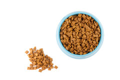 Pet dried food in cyan plastic bowl Royalty Free Stock Photo