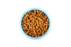 Pet dried food in cyan plastic bowl Stock Photography