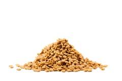 Pet dried food Stock Image