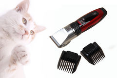 Pet electric hair clipper. And cutting length comb on white.It's used to grooming the cat stock photography