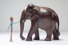 Pet elephant Stock Images