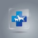 Pet First Aid icon. Pet First Aid icon vector. Glass icon Stock Images