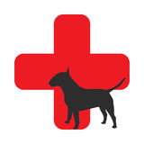 Pet First Aid. Vector illustration in flat style Stock Images