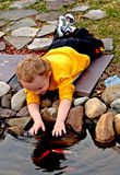 Pet Fish. Toddler with hands in pond petting fish Royalty Free Stock Photos