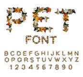 Pet font. Cat alphabet. letters of cats. Pets typography stock illustration