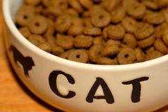 Pet food. In dish with CAT written on it Royalty Free Stock Image