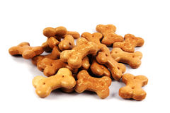 Pet food. Stock Images