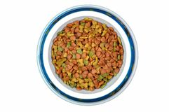 Pet food in bowl. Stock Photography