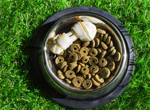 Pet food in a bowl on a green grass Stock Images