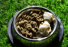 Pet food in a bowl on a green grass Royalty Free Stock Images