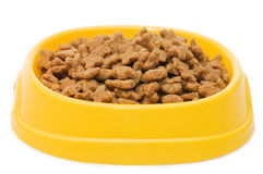 Pet Food Bowl Isolated Royalty Free Stock Images