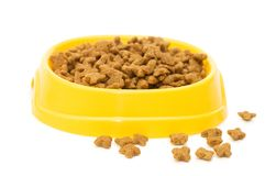 Pet Food Bowl Isolated White Royalty Free Stock Photo